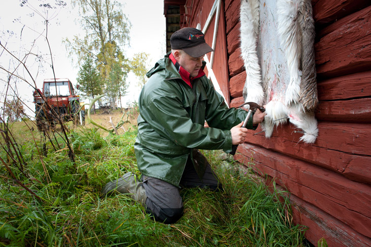 The Reindeer Herders #08